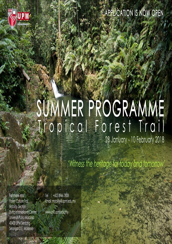 /content/summer_programme_tropical_forest_trail-35055